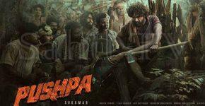 Pushpa Raj Hindi Film Cast, Release Date Trailer, IMDb